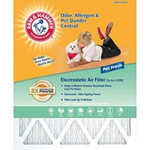 15x20x01 Arm & Hammer Pleated 3-month Air Filter 4 Pack