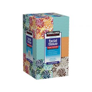 Kirkland Signature Facial Tissue Upright 90 Sheets - 12 Pack